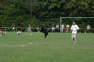 disc-dogging-DSC_0441